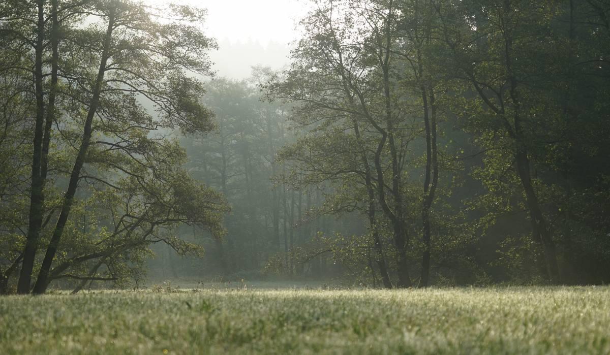 Mein schönster Platz im Paderborner Land